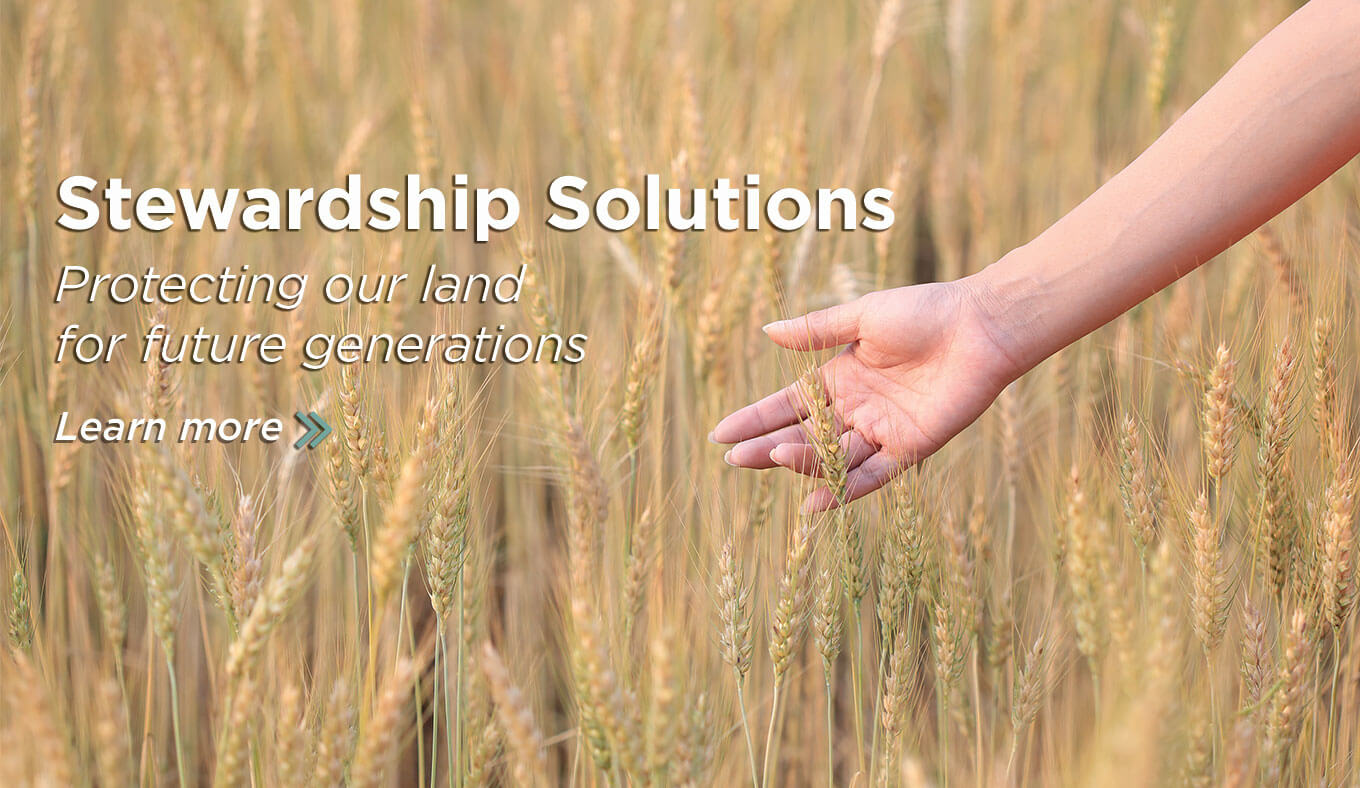 Agribusiness solutions