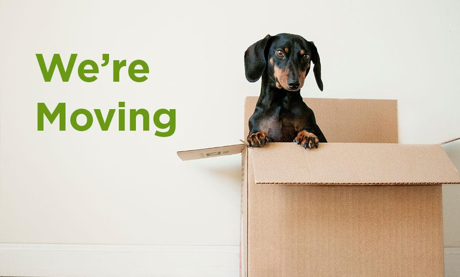 Our Maple Grove team and four-legged friends are moving.