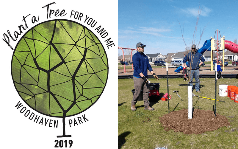 Plant a Tree for You and Me Program