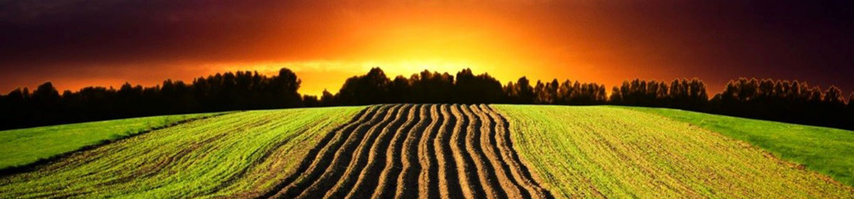 Certifying Acres – A Pilot Study for Sustainability