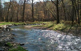 Root River One Watershed, One Plan