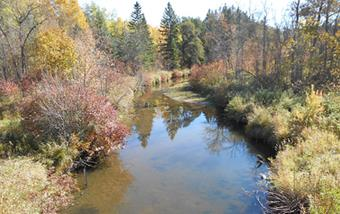 Thief River Watershed - One Watershed, One Plan